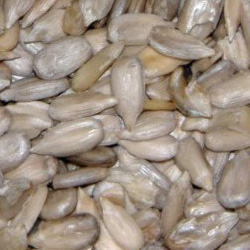 Sunflower Hearts for Wild Birds - 20kg